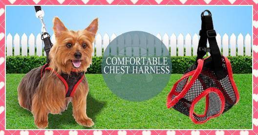 Comfy Control Dog Harness (Small / Medium)