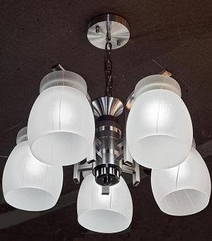 Contemporary Style Pendant Light