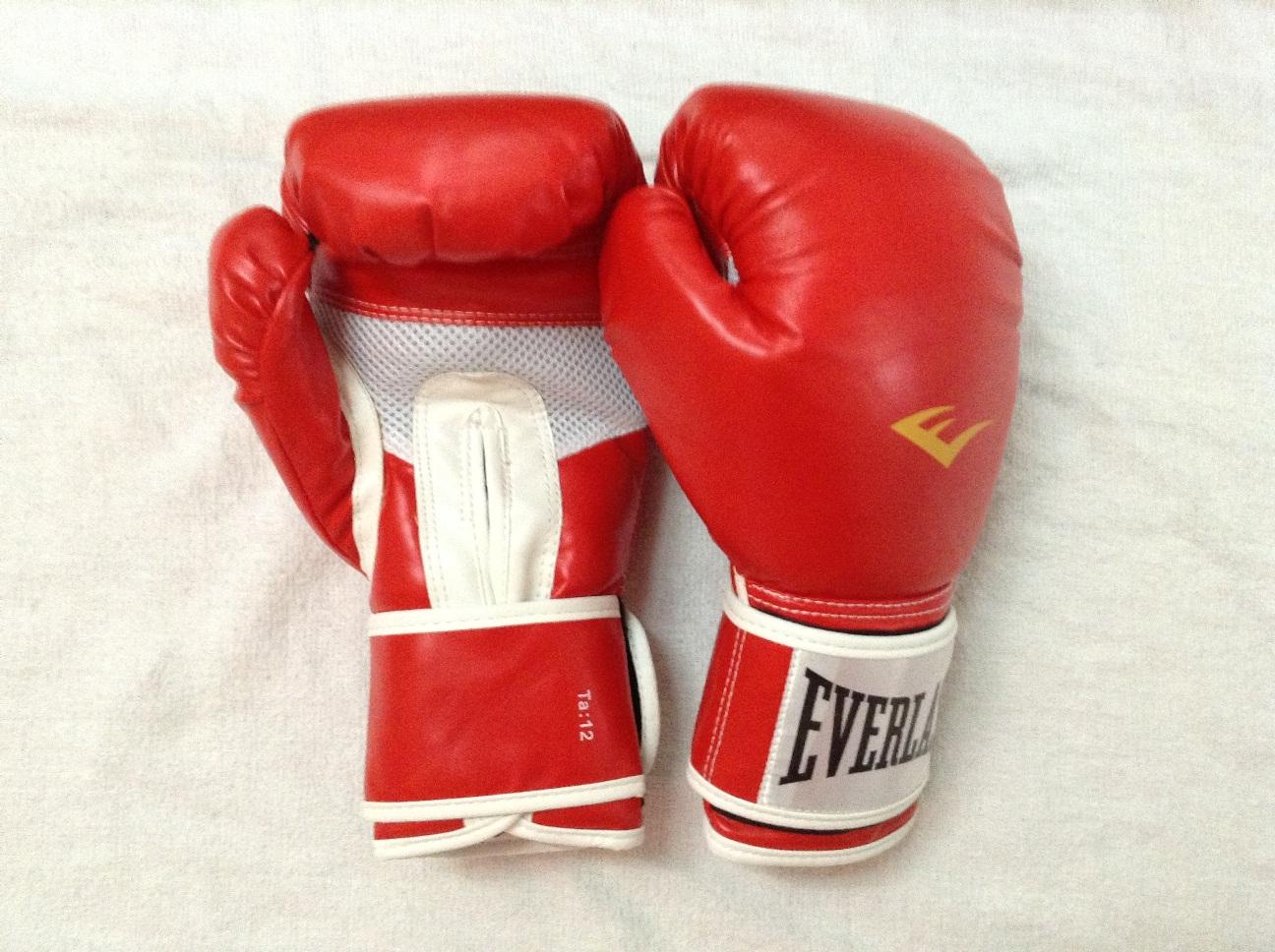 Image result for Muay Thai Boxing Gloves