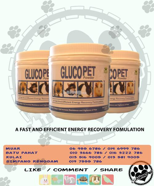 GLUCO PET_ENERGY RECOVERY FORMULATION