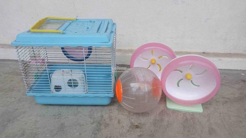 Hamster home, Home,Toys,Roller