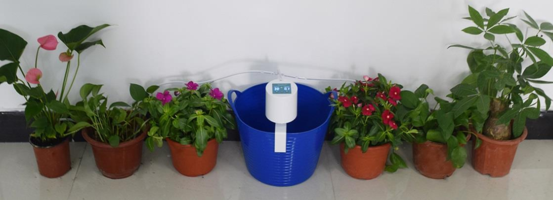 Indoor Plants Automatic Watering System