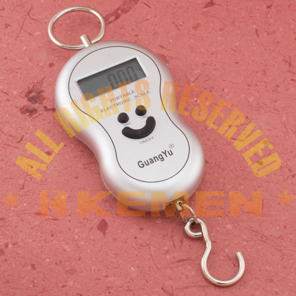 Portable Electronic Hanging Scale 40kg Capacity 10g Division