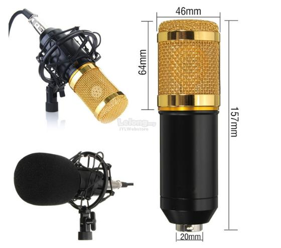 Professional Condenser Microphone Mic Sound Studio Recording Dynamic
