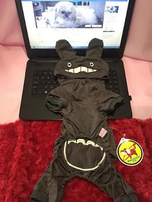 Totoro Pet Clothes