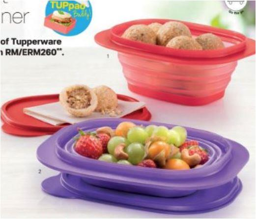 Tupperware Go Flex Rectangular (1) 850ml