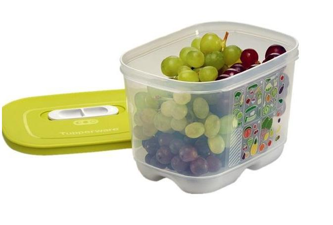 Image result for tupperware vent smarts